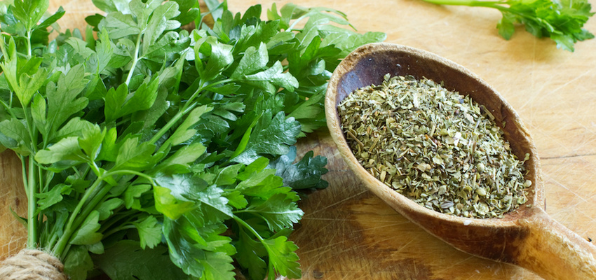 Parsley – A Vitamin Bomb