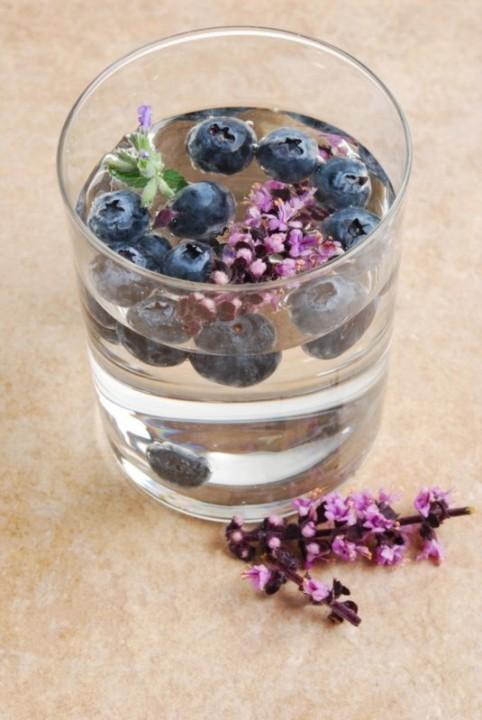 blueberry-lavender-482x720