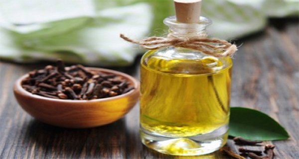 clove-oil-for-liver-cleansing