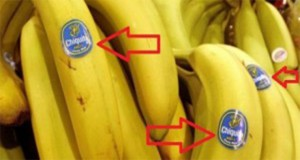 Be Careful What Are You Buying: Do You Know What The Stickers on The Fruits Mean?