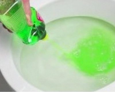 VIDEO-She Puts A Dishwashing Soap In The Toilet: What Happened Next Was Completely Genius!