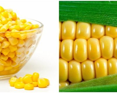The Shocking Truth About Corn – 6 Reasons to Never Eat Corn Again!!!