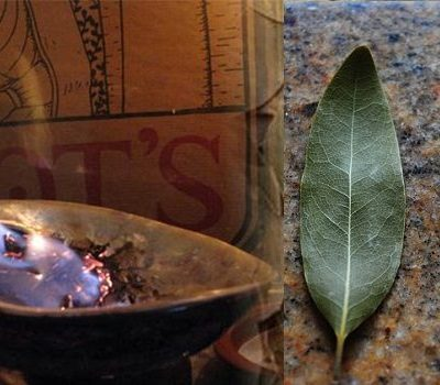 BURN A BAY LEAF IN YOUR HOUSE. THE REASON? YOU'LL BE AMAZED