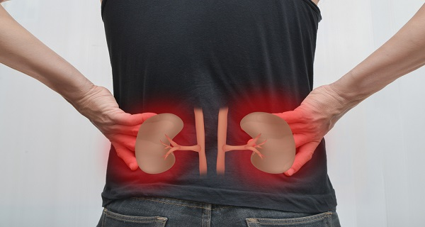 10 Most Common Habits That Damage Your Kidneys