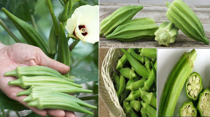 6-little-known-reasons-to-eat-more-okra