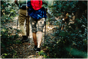 Up the Mountains, Down the Valleys: 7 Awesome Benefits of Hiking